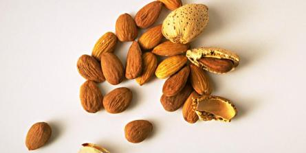 Les vertus santé des noix et graines oléagineuses