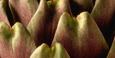 Fonds d'artichaut à la marocaine