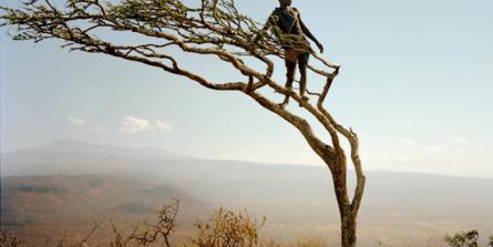 Les hommes préhistoriques souffraient-ils de cancers, maladies cardiovasculaires, diabète ?