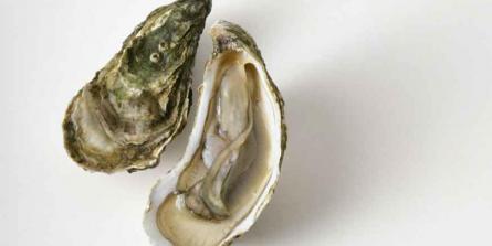 Grossesse : pourquoi et comment ne pas manquer de zinc