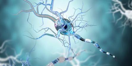 Sclérose en plaques : 4 conseils éprouvés pour ralentir les poussées