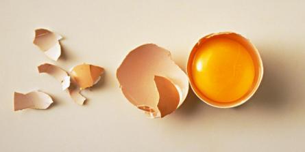 L'oeuf : pourquoi en manger, comment le choisir