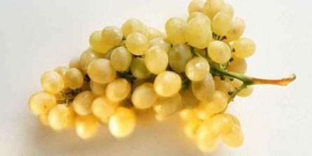 Le raisin : pourquoi et comment le manger