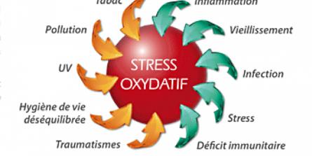 Vieillissement Qu Est Ce Que Le Stress Oxydant Thierry Souccar