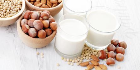 Laitages : les alternatives sans lactose ni caséine