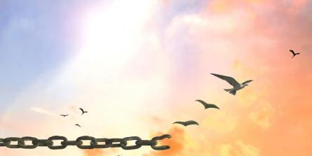 NERTI : nettoyer ses émotions pour se débarrasser des peurs incontrôlables