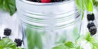 Les antioxydants des aliments en un clin d'oeil